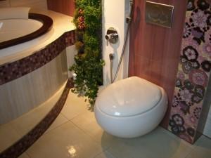 Элегантный дизайн ванной с гигиеническим душем