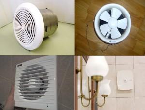 Фотография разновидностей вентиляторов