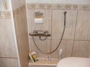 Фото смесителя с терморегулятором и гигиеническим душем