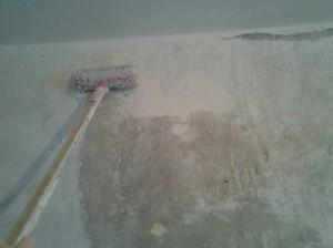 Фото процедуры грунтовки стен