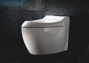 Фотография навесного унитаза в интерьере туалета в темных тонах