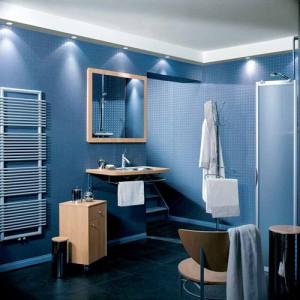 Фотография примера отделки ванной комнаты в синем цвете
