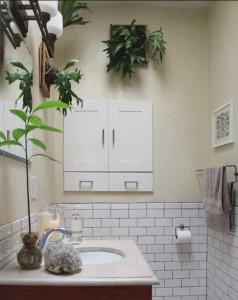 Фото цветов в ванной без окна