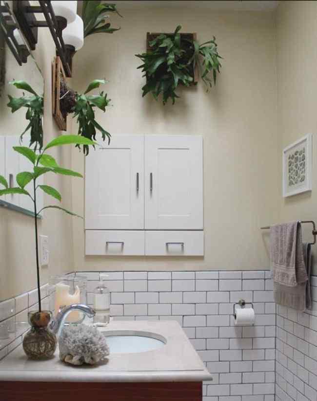 правильно разместить цветы в ванной