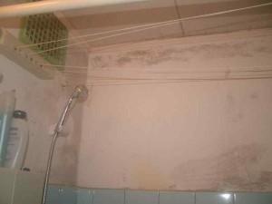 Фото плесени на потолке в ванной комнате