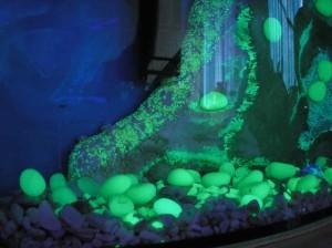 Фото светящихся камней